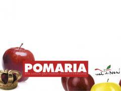 Pomaria 2021.  The Apple- fest in, Val di Non Valley, Trentino