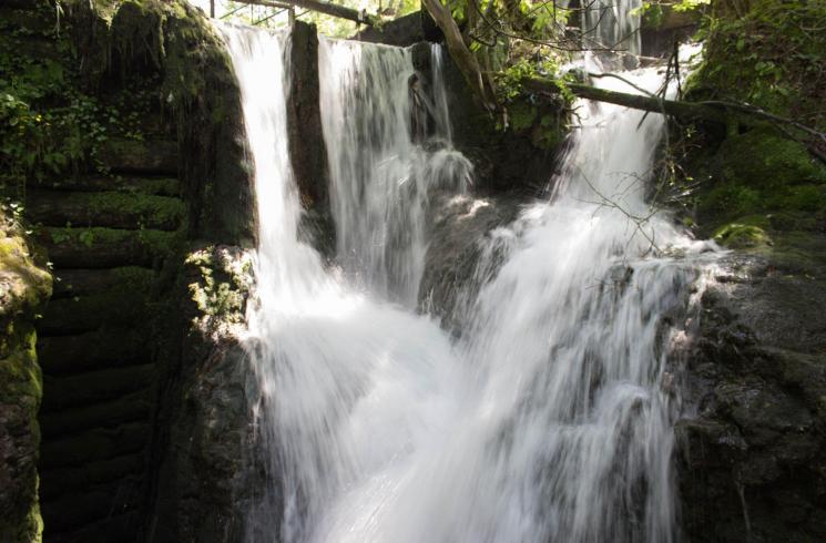 Canyon-Rio-Sass: spettacoli d'acqua in Val di Non